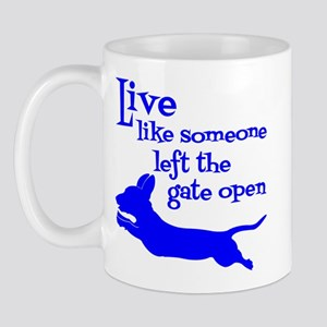 Open Gate! Mug Mugs