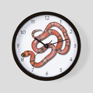 Honduran Milksnake Wall Clock