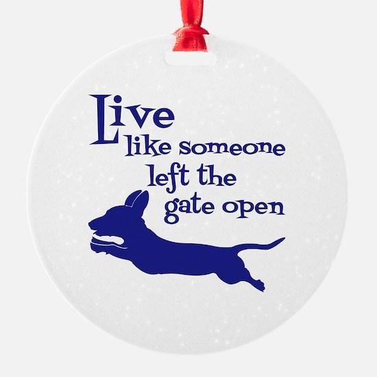 OPEN GATE! Ornament