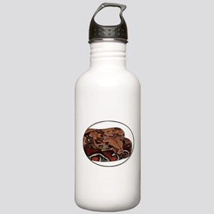 red tail boa Stainless Water Bottle 1.0L