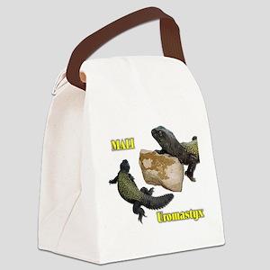 uromastyx Canvas Lunch Bag