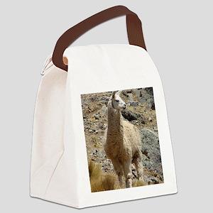 Llama Sentinal Canvas Lunch Bag