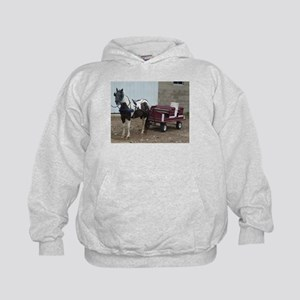 horse and carriage Hoodie