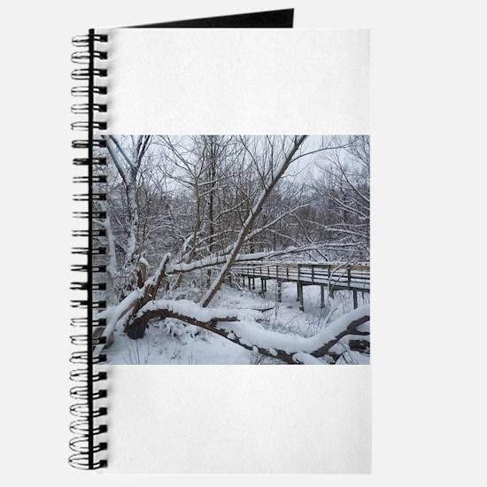 winter in cleveland Journal