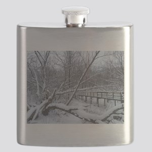 winter in cleveland Flask