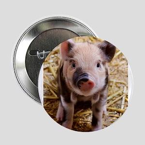 "Piglet 2.25"" Button"