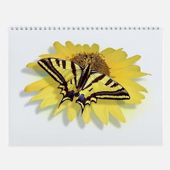 Tiger Swallowtail Butterfly & Daisy Wall Calendar