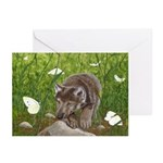 Chasing Butterflies: Greeting Cards (Package of