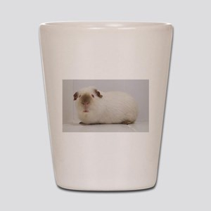 Himalayan guinea pig Shot Glass