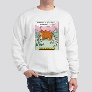 Early Acupuncture Sweatshirt