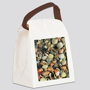 Seashells Canvas Lunch Bag