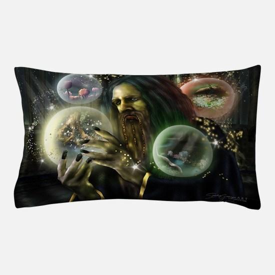 The Collector Pillow Case