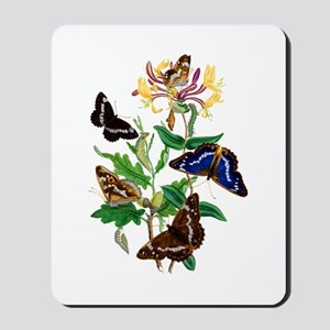 BUTTERFLIES AND HONEYSUCKLE Mousepad
