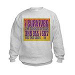 I Survived The Summer Of Love Kids Sweatshirt