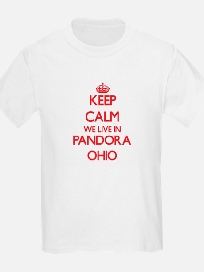 Keep calm we live in Pandora Ohio T-Shirt
