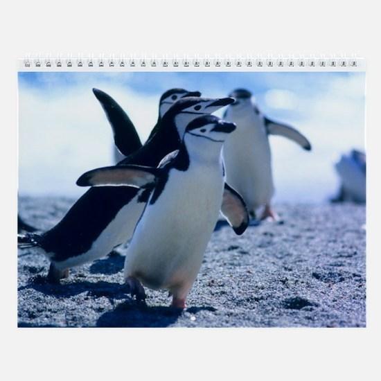 Cute Penguins Wall Calendar