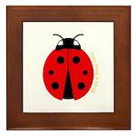 Ladybug Framed Tile