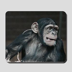 young chimpanzee Mousepad