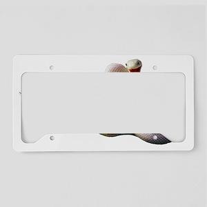 White Snake License Plate Holder
