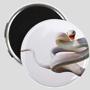 White Snake Magnets