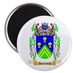 Ioselevich Magnet