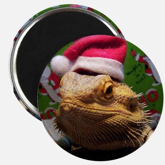 Beardie Santa Hat Magnets
