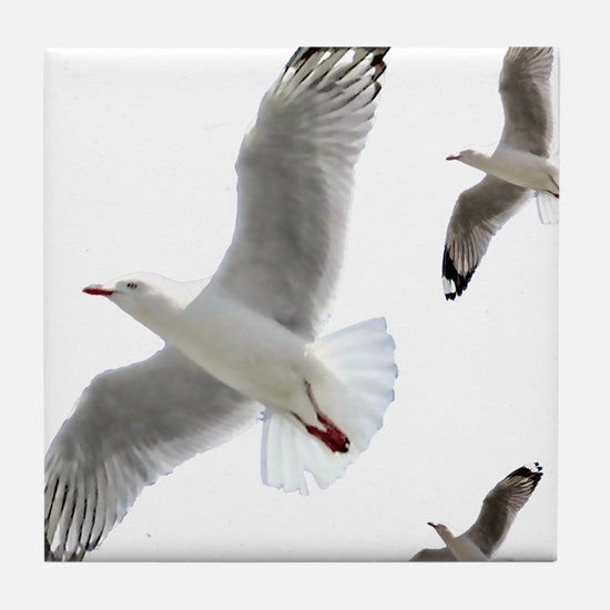 3 Gulls in Flight copy Tile Coaster