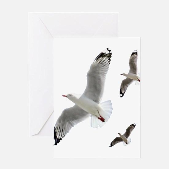 3 Gulls in Flight copy Greeting Cards