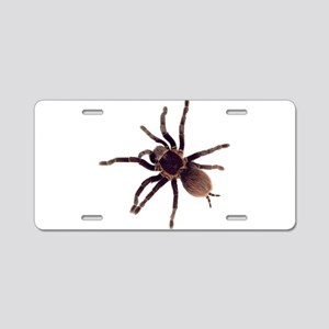 Hairy Brown Tarantula Aluminum License Plate
