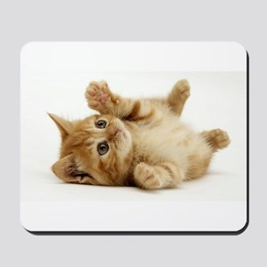 Orange kitten Mousepad