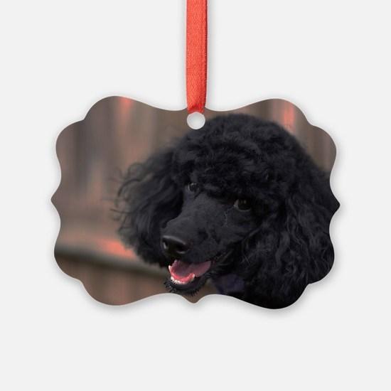 Cute Miniature Ornament