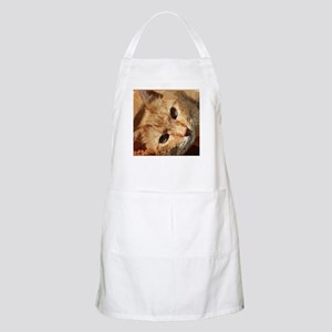 Tabby Cat Low Poly Triangles Light Apron