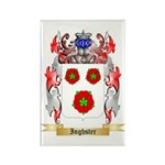 Inghster Rectangle Magnet (100 pack)