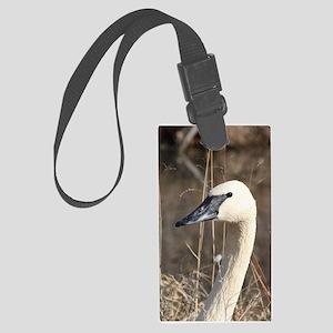 Trumpeter Swan Large Luggage Tag