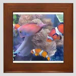 Clown Fish Aquarium Framed Tile