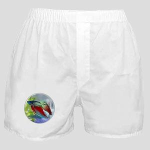 Colorful Betta Fish in a Bubble Boxer Shorts