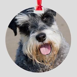 Schauzer dog Round Ornament