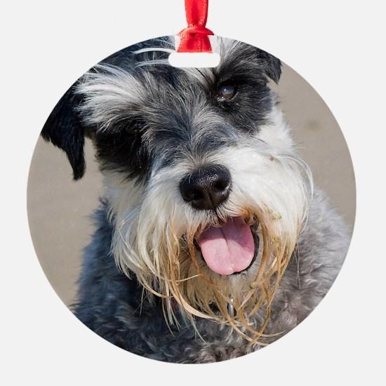 Schauzer dog Ornament