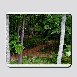 Cumberland Plateau Backyard Mousepad
