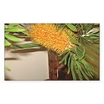 Banksia Bottlebursh Rectangle Sticker