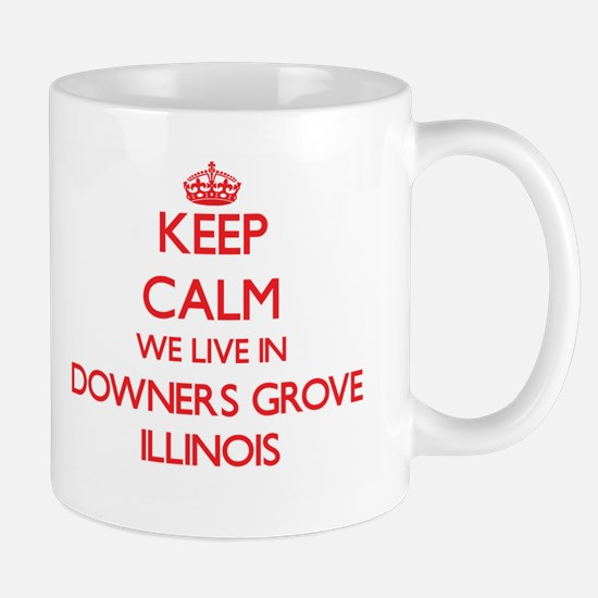 Keep calm we live in Downers Grove Illinois Mugs