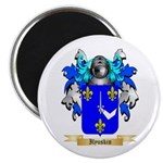 Ilyuskin Magnet