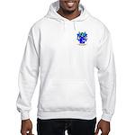 Ilmanov Hooded Sweatshirt