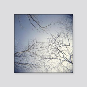 "Holga Sky & Trees  Square Sticker 3"" x 3"""