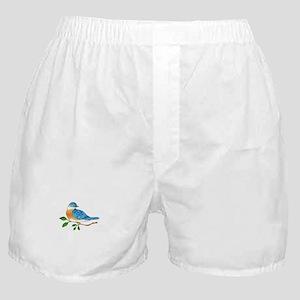 BLUEBIRD ON BRANCH Boxer Shorts