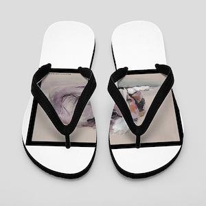 Sleeping Collie Flip Flops