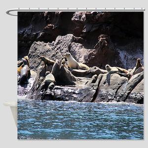 Sea Lion Party Shower Curtain
