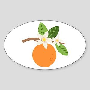 Orange Blossom Citrus Fruit Tree Branch Sticker