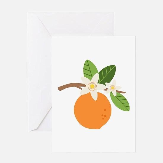 Orange Blossom Citrus Fruit Tree Branch Greeting C