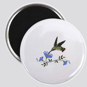 HUMMINGBIRD AND FLOWERS Magnets